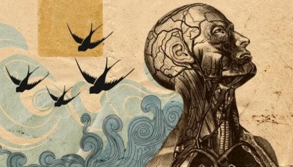 Mänsklig figur med fåglar i bakgrunden.