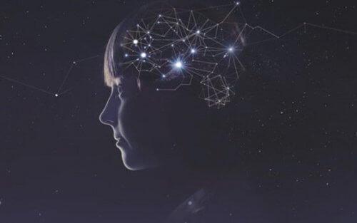 Kretsar i hjärnan