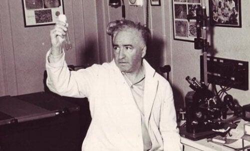 Wilhelm Reich i labbet