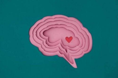 Bild på ett hjärta i en hjärna