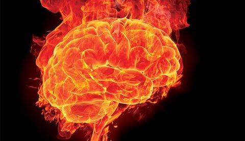 hjärnan i brand
