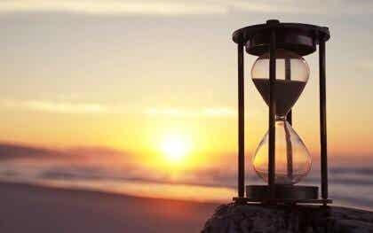 Kognitivt tålamod: bearbeta världen utan brådska