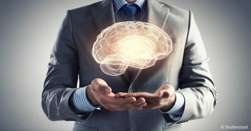 Den mänskliga hjärnan och 7 av dess gåtor