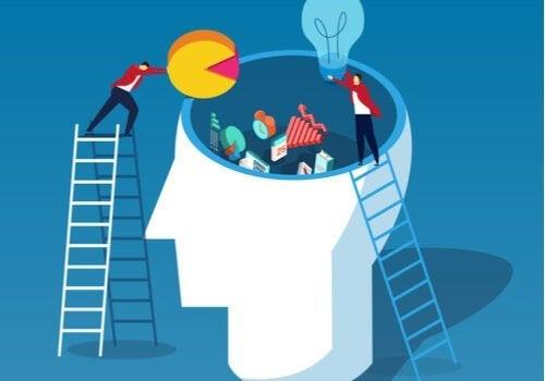 John Swellers kognitiva lastteori och dess egenskaper