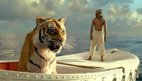 Tiger som sitter i en båt.