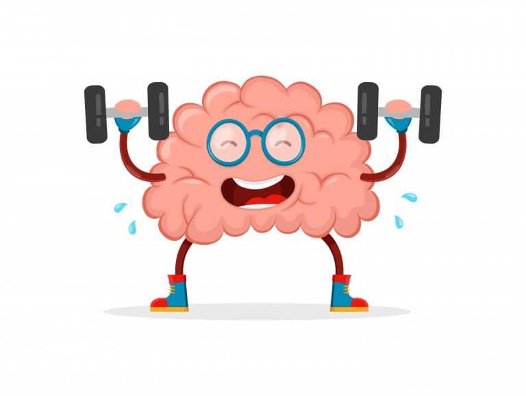 Vanliga myter om hjärnan.