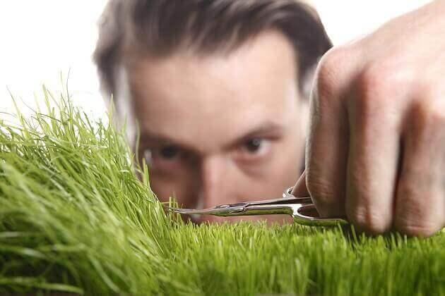 Man som klipper gräs med sax