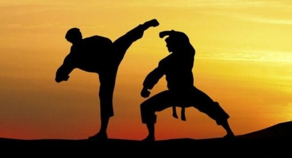 två karateutövare - kampsporter