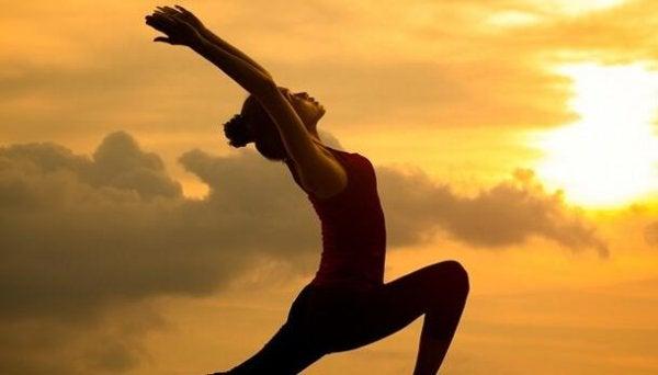 Seitai: harmonin och hälsans kultur