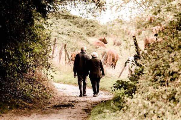 Kollektivt minne och berättelser från morföräldrar