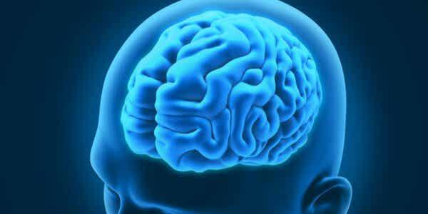 3 intressanta neurologiska störningar