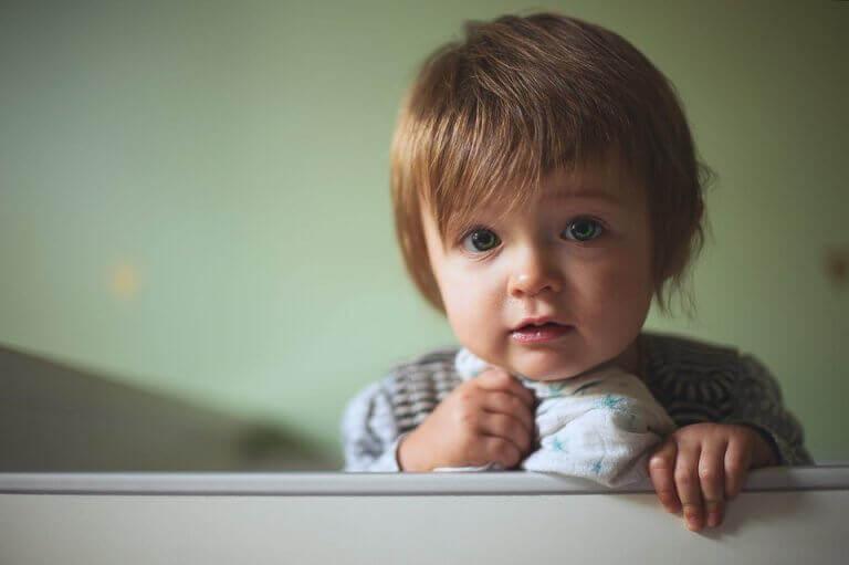 9 månaders ålder: milstolpar i en bebis utveckling