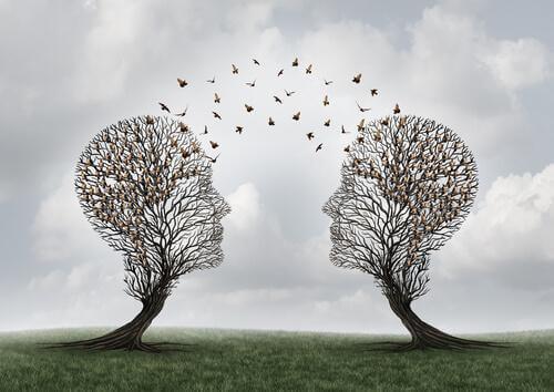 Vad är social kognition och vad används det till?
