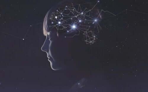 Nervkopplingar i hjärnan