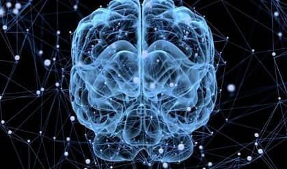 Sover hjärnan eller kopplar den bara bort?