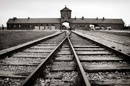 Auschwitz svartvit bild.