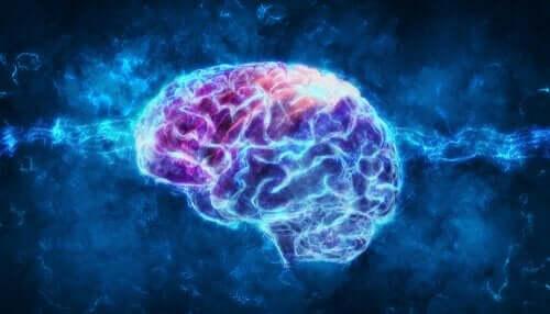 Upplyst hjärna.
