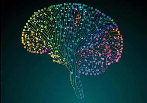 Human Connectome-projektet: att kartlägga hjärnan