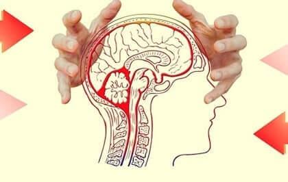 Upptäck hur oro påverkar hjärnan