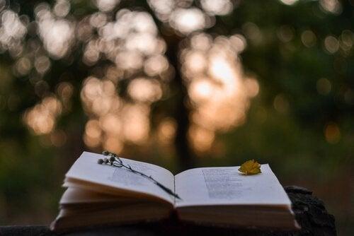 Öppen bok i naturen