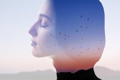 En avslappnad kvinnas profil med berg och fåglar.