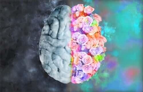 Neuroestetik: blandningen av neurologi och konst