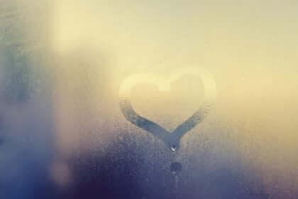 Hjärta på ruta.