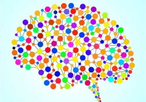 97 tidigare okända områden i hjärnan