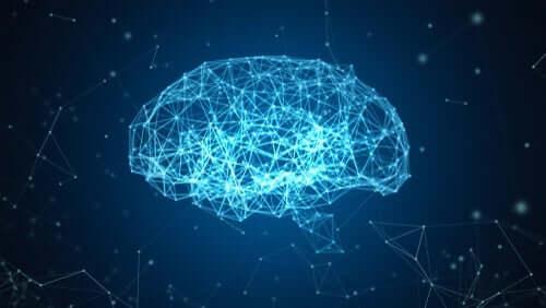 Blue Brain-projektet: en rekonstruktion av hjärnan