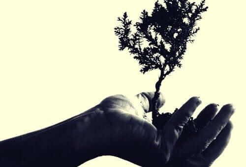 Medkännande empati hjälper oss att växa