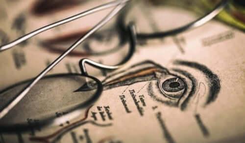 Illustration av öga