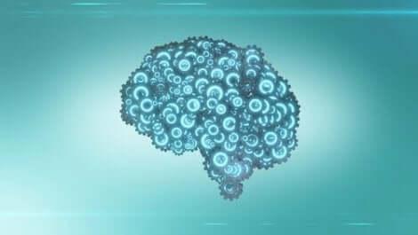 Mekanismerna i hjärnan