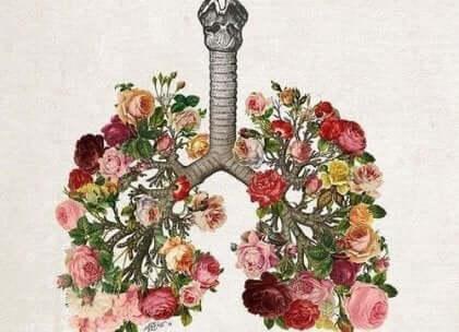 Blommor som lungor.