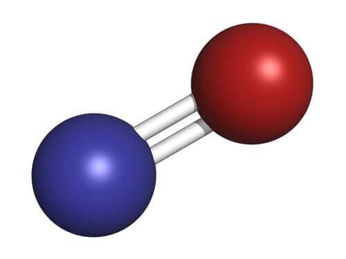 Den fascinerande signalsubstansen kväveoxid