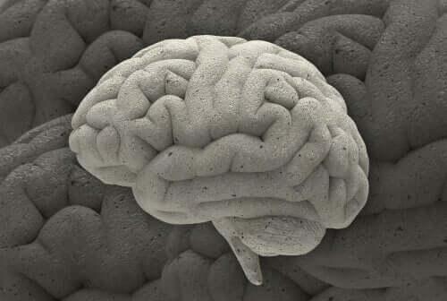 Tre fascinerande fall inom neurovetenskapen