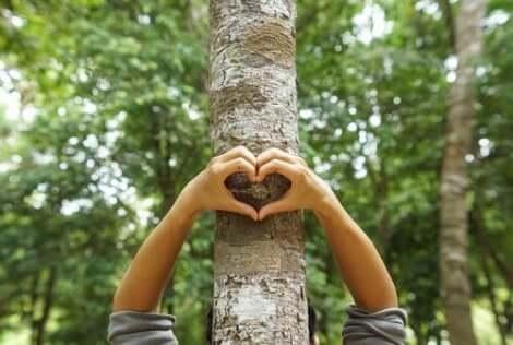 Hjärtformade händer på träd