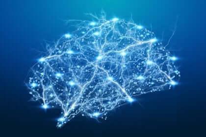 Nervbanor i hjärnan