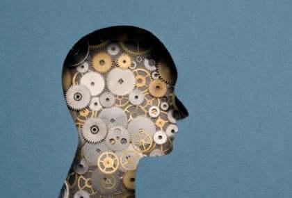 Profil av människa