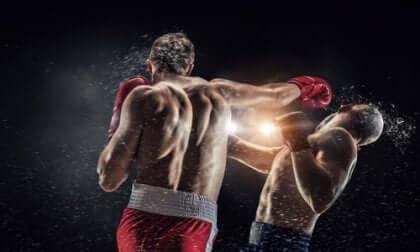 Boxare under match.