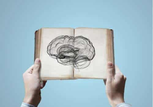 Neurovetenskap: går det att ärva kunskap?