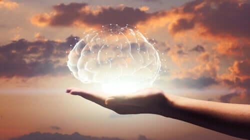 Hjärna i hand.