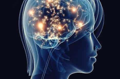 Neurodegenerativa effekter av obehandlad depression