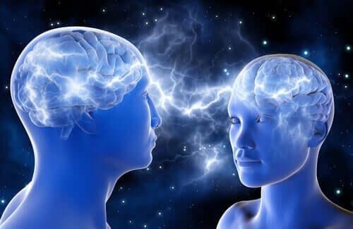 Två hjärnor med anslutning.
