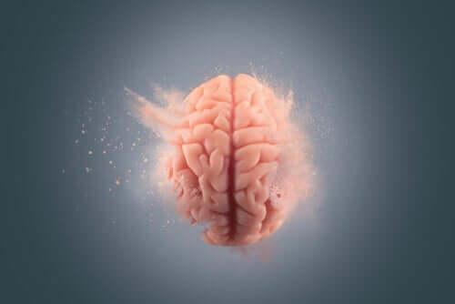 Kokains effekter på hjärnan: varför är de så förödande?