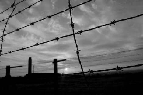 Taggtråd vid koncentrationsläger