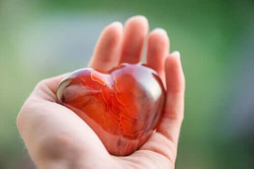Ett hjärta i handen.