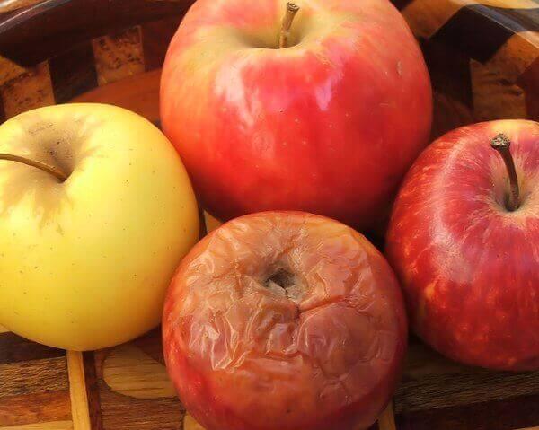 Fyra äpplen.