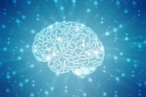 Vad är neuromyter och vilka är de vanligaste?