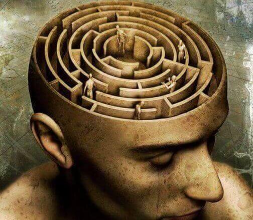 Labyrint i hjärnan.