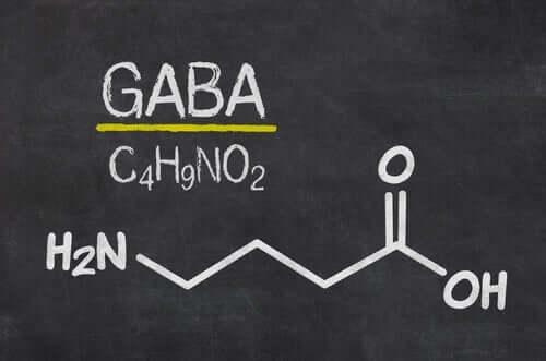 GABA utsöndras i mellanhjärnan